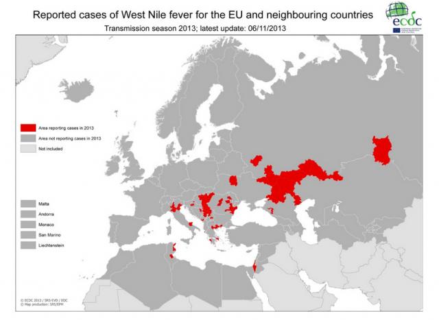 Wirus Zachodniego Nilu